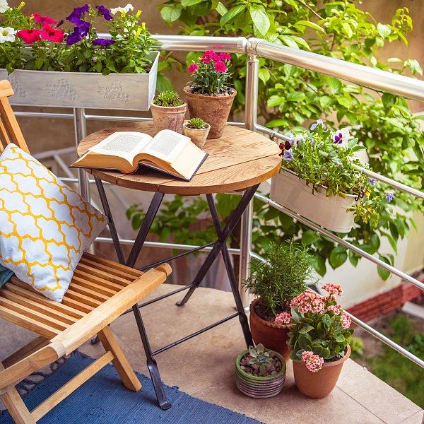 Kvetou i v největších vedrech. Představujeme tradiční i méně známé ozdoby oken a balkónů